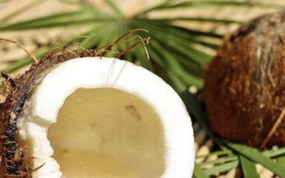 L'huile vierge de Coco LS TRADE : Production, propriétés & utilisation