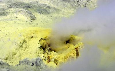 Les propriétés du savon LS COAL POT LS TRADE au Soufre
